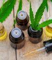 CBDTherapy is dedicated to the legal CBD Sale (Vente CBD) of many CBD products